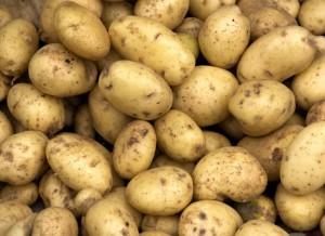 kartofflen